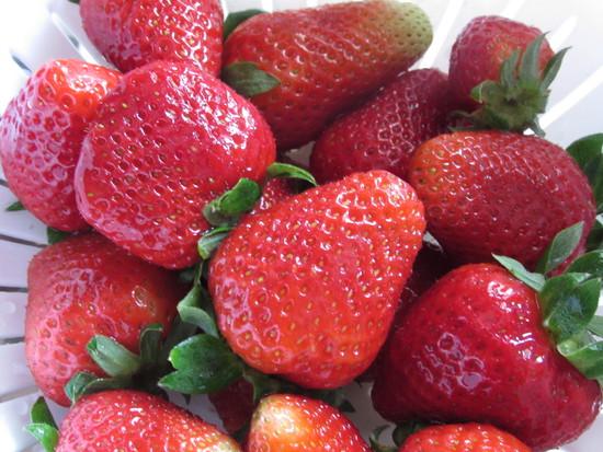 Nun die Erdbeeren waschen, abtrocknen, entkelchen, ggf. schlechte Stellen wegschneiden, vierteln und in ein hohes Gefäß geben.