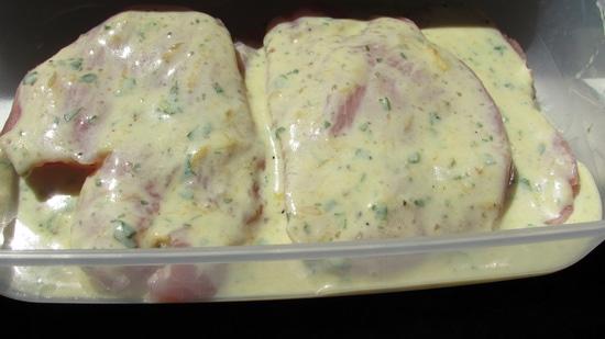 Danach die Putenschnitzel in die Frischhaltebox legen und anschließend die Marinade über jedes Putenschnitzel geben.